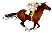 photo de LIBRE LADY (GB)