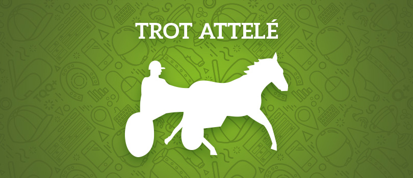 course-trot-attele