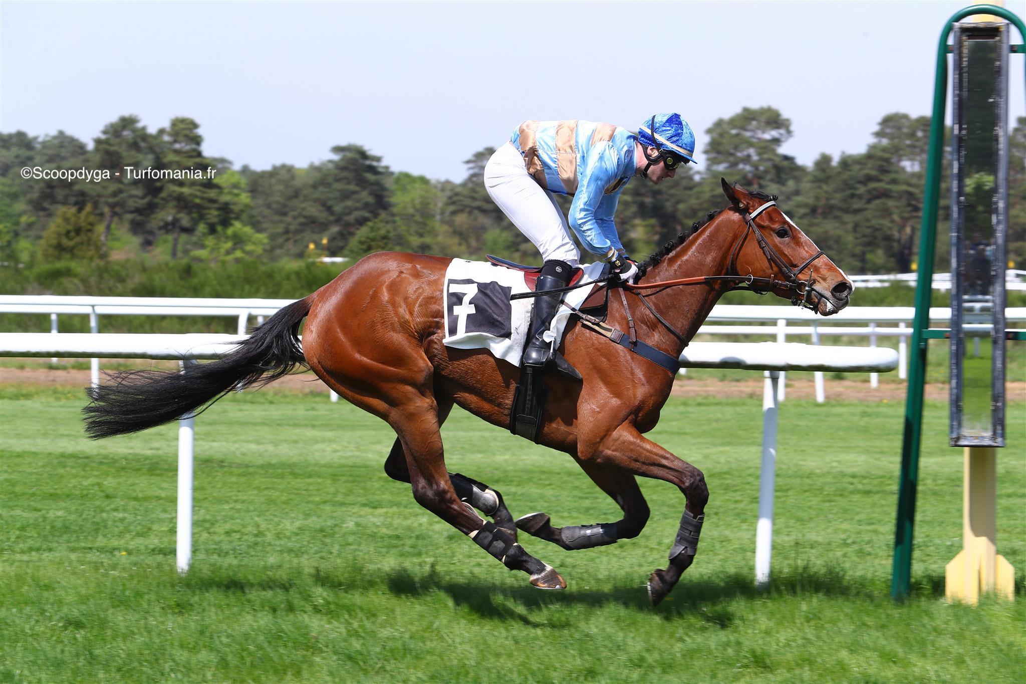 jockey-turf