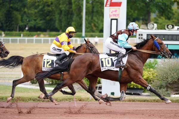 https://www.turfomania.fr/uploads/mobile/fiche-cheval/loupe/vignette-600-36058.jpg